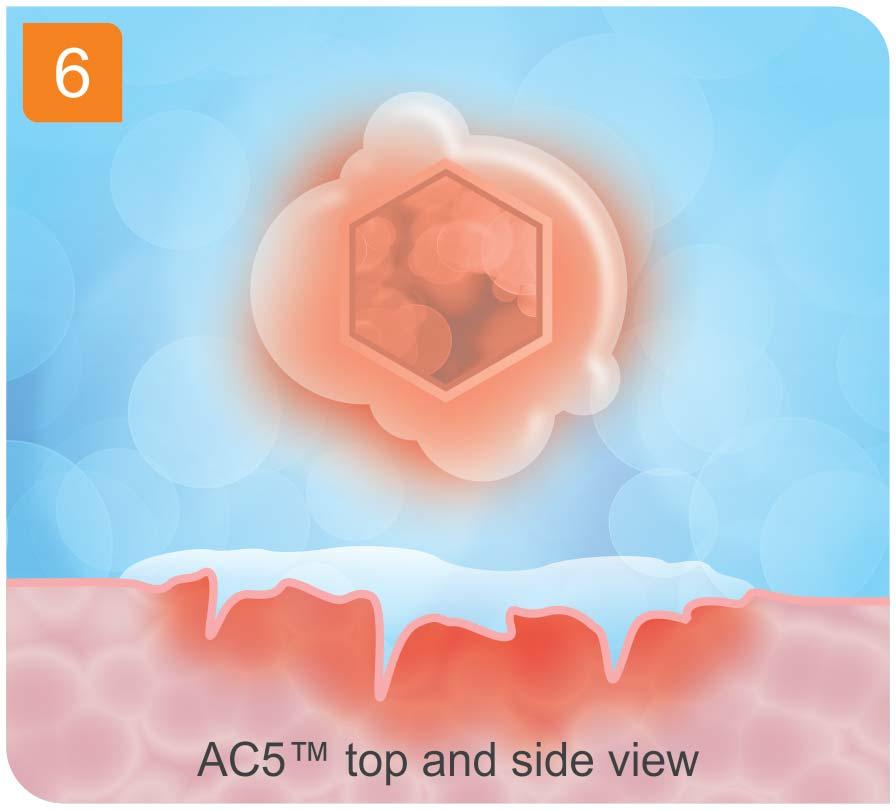 ac5-PANEL-6.jpg