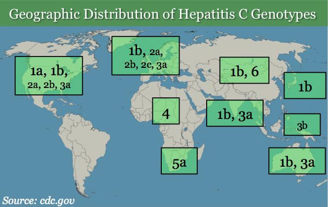 Hepatitis C Genotypes